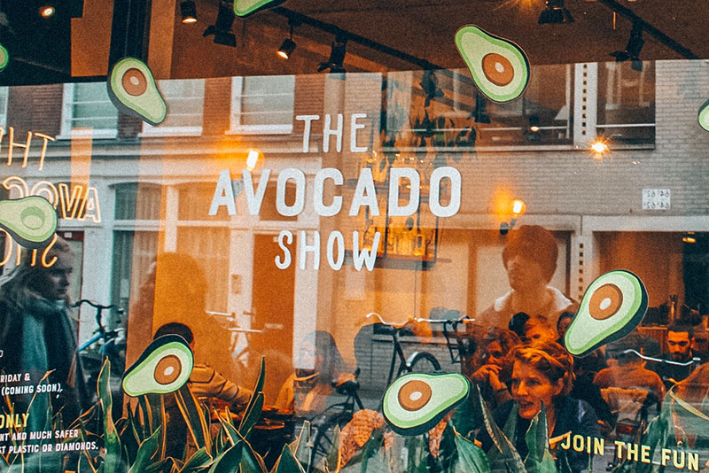 Where to eat in Amsterdam in the rain? Avocado Show!