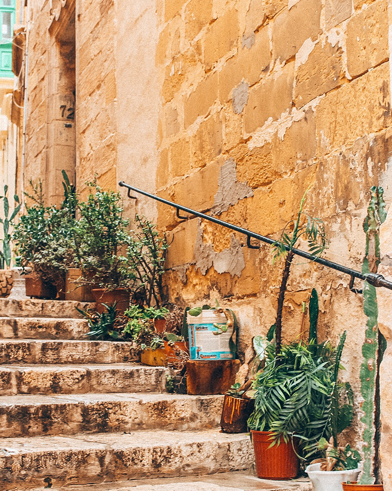View of a street in malta with pot plants lined up