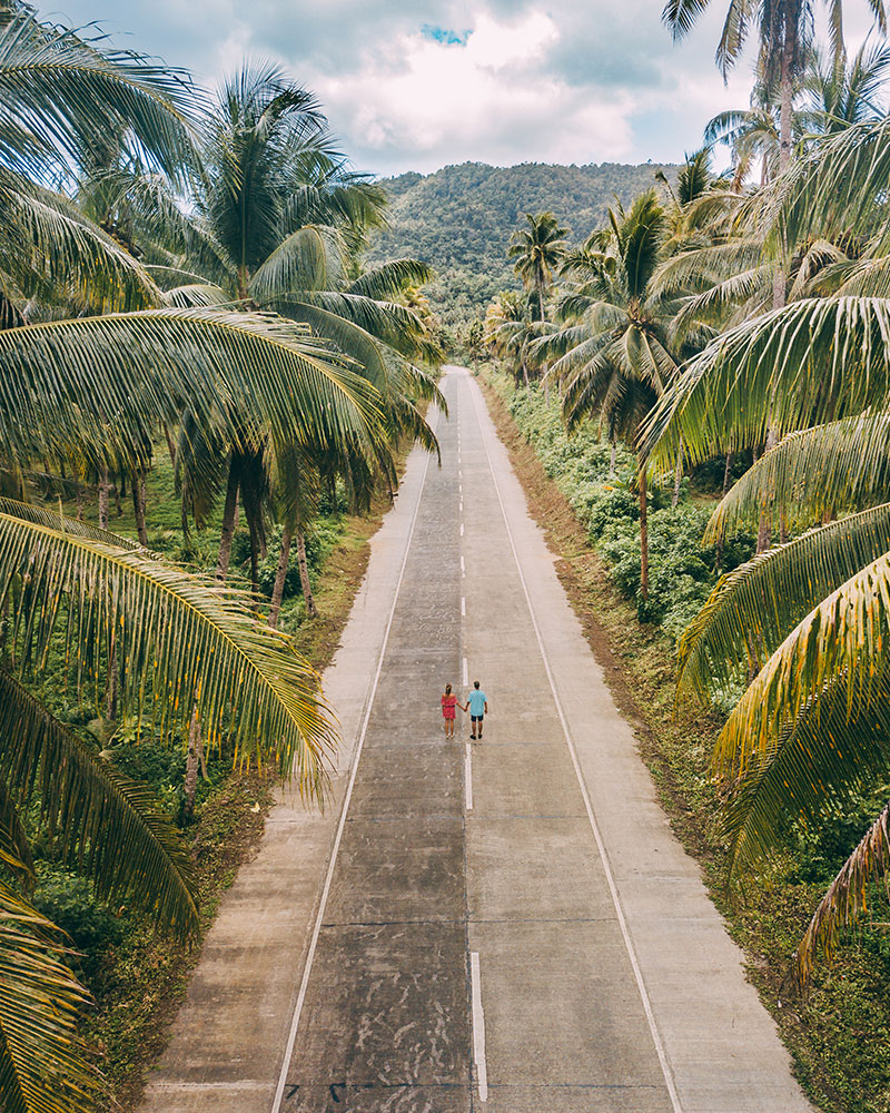 Straight road with palm trees either side near coconut tree viewing point on siargao island, philippines