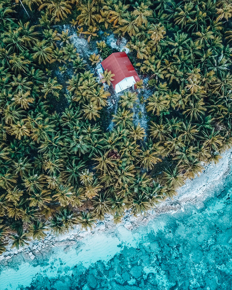 Drone shot of palm trees and sandy beach on Daku Island Siargao