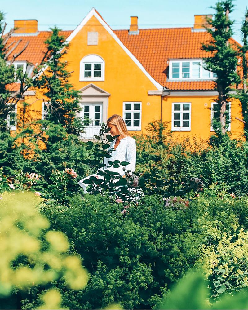 Garden in frederiksberg in Copenhagen