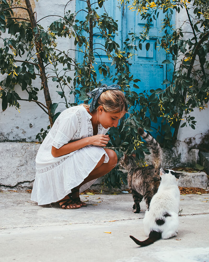 Me with some cats in Mykonos in front of a blue door - best photography spots in Mykonos