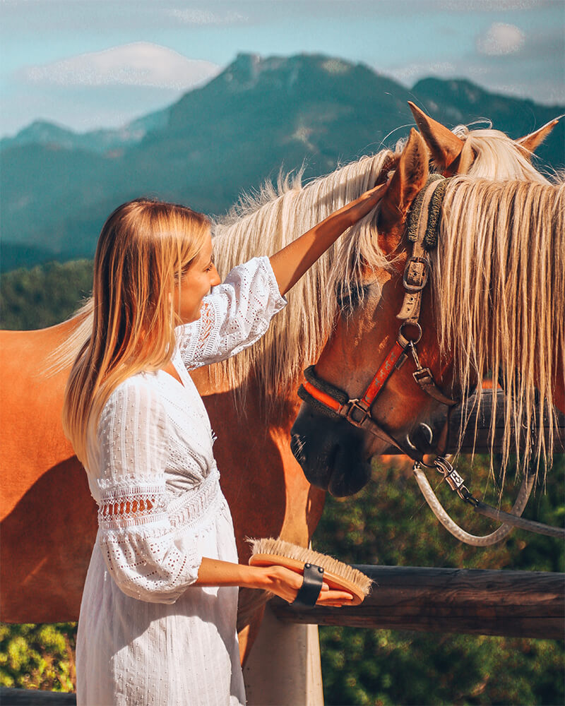 Me brushing horses in Schliersee