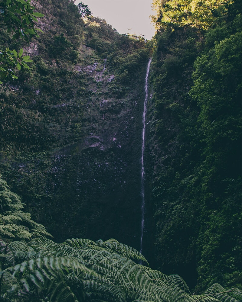 View of the waterfall at Levada caldeirao Verde Madeira