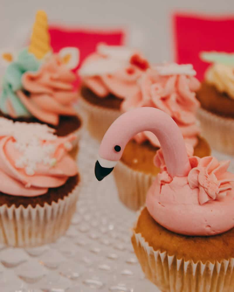 They also have some flamingo cupcakes at WONDR!