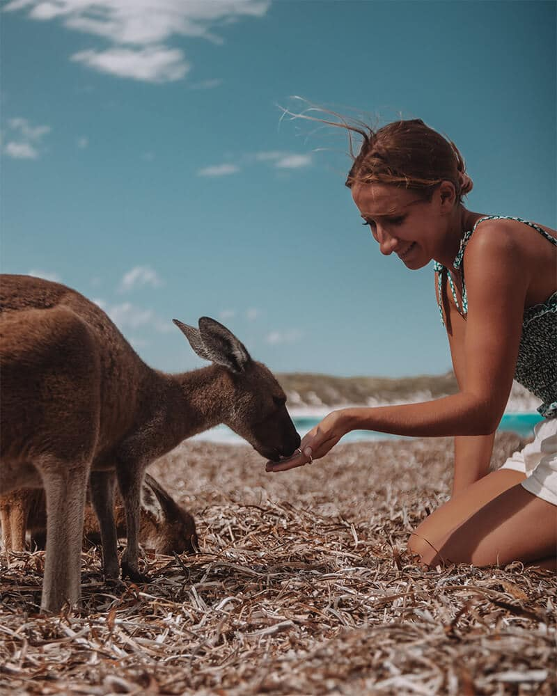 Me and the kangaroos at Lucky Bay in Esperance on our Perth to Esperance Road Trip!