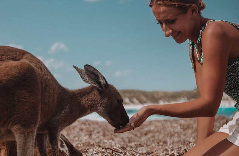 Solarpoweredblonde with a kangaroo on Lucky Bay in Esperance Western Australia