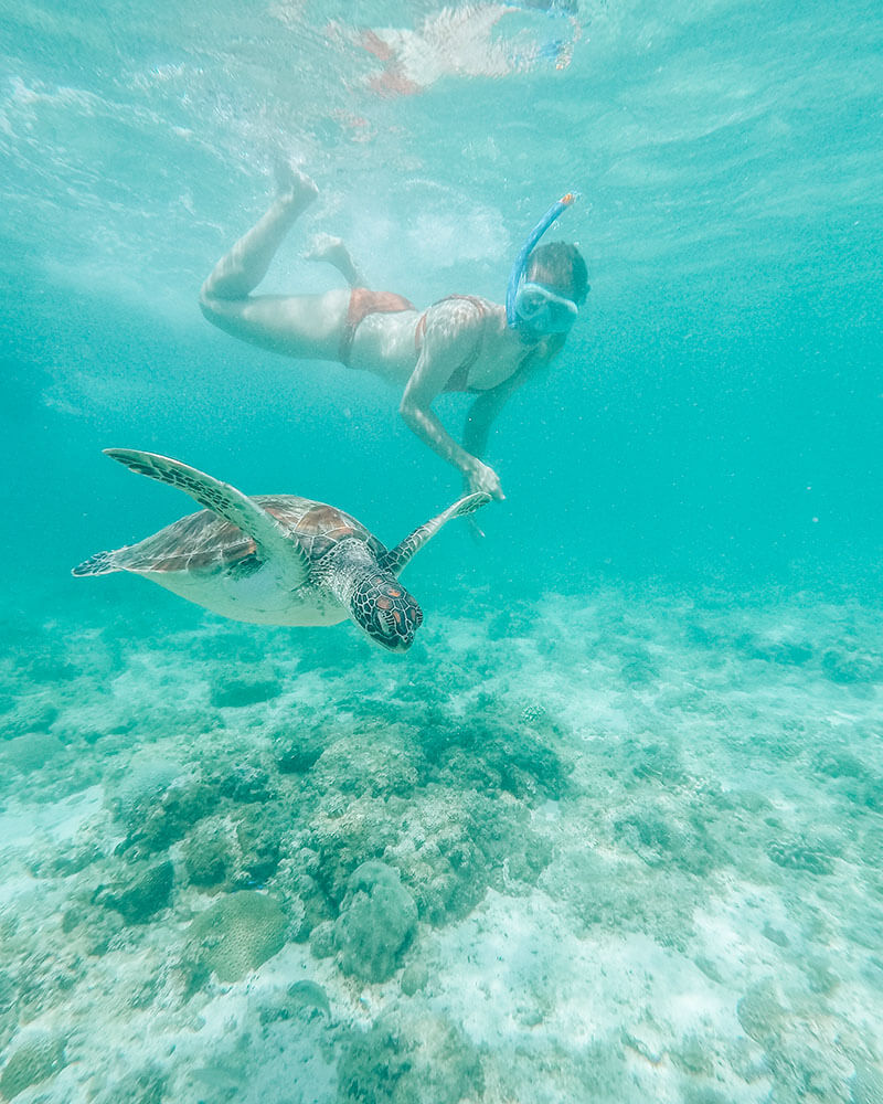 GoPro shot in the Philippines - Solarpoweredblonde and a turtle