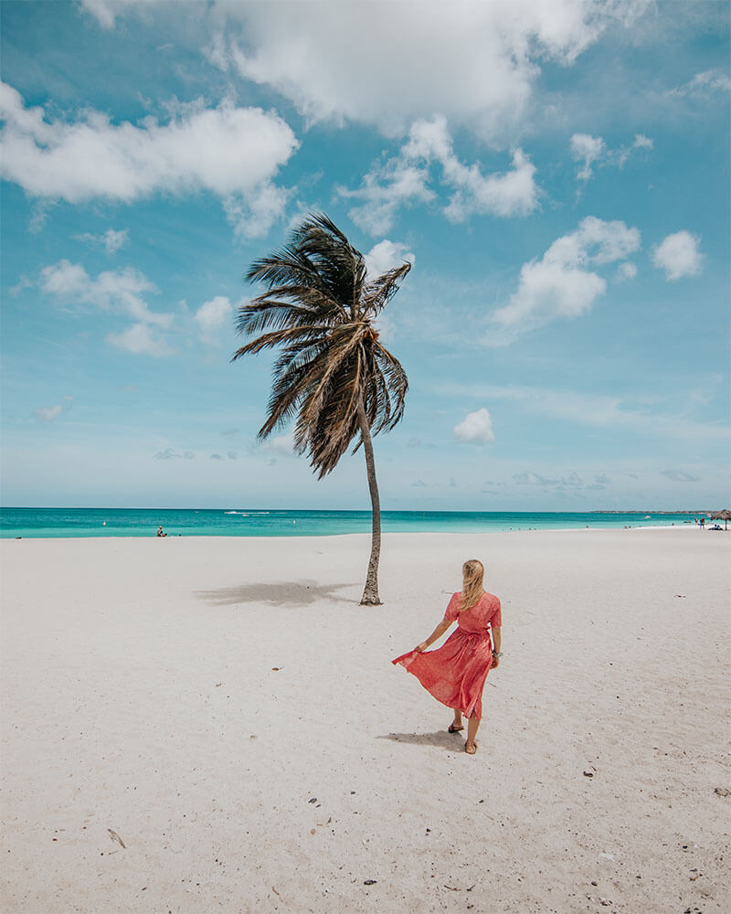 Girl on the beach at Eagle beach next to a palm tree